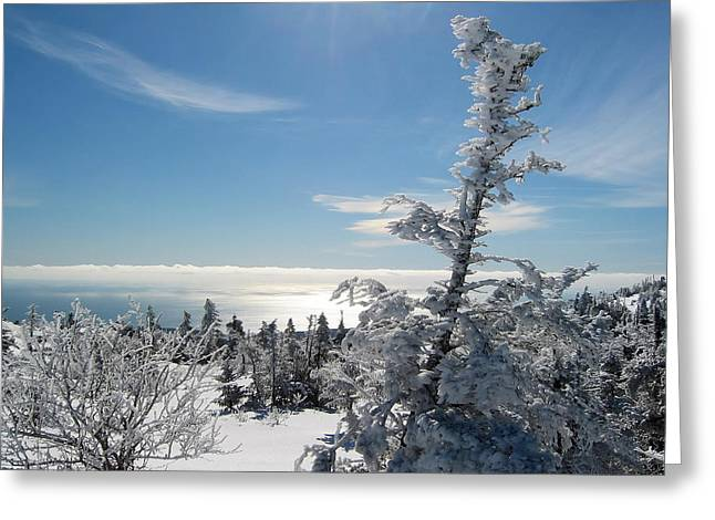 Maine Landscape Greeting Cards - A Maine Winter Greeting Card by Mountain Dreams