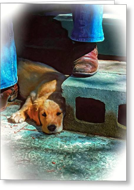 Retriever Prints Digital Art Greeting Cards - A Man and His Dog oil Greeting Card by Steve Harrington