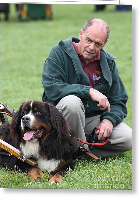Owner Greeting Cards - A Man and His Dog Greeting Card by Vicki Spindler