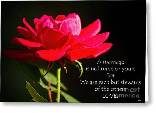 Recently Sold -  - Rose Petals Greeting Cards - A Marriage Greeting Card by Sandra Clark
