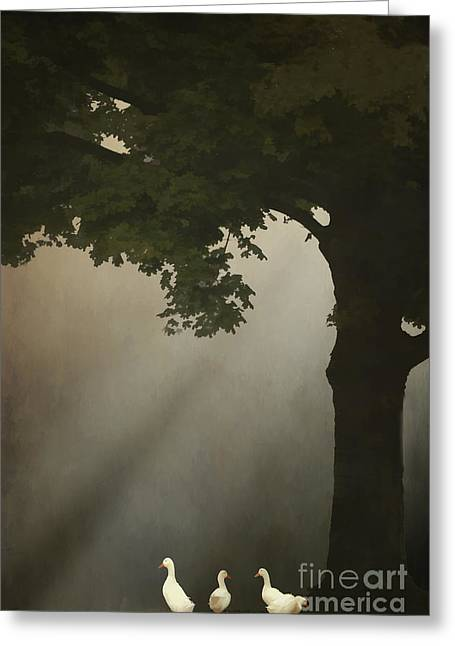 Thomas York Greeting Cards - A Meeting Under The Tree Greeting Card by Tom York Images