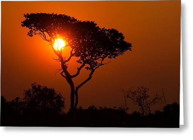 Geobob Greeting Cards - A Memorable Savanna Sunset Kundelungu National Park DR Congo Greeting Card by Robert Ford