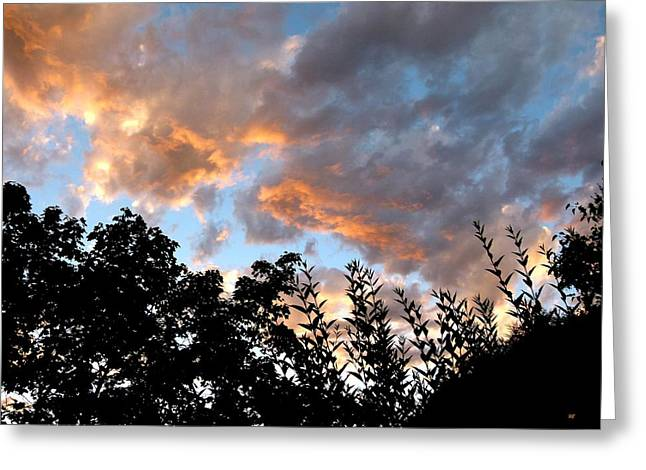 A Summer Evening Greeting Cards - A Memorable Sky Greeting Card by Will Borden