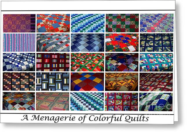 Thread Tapestries - Textiles Greeting Cards - A Menagerie of Colorful Quilts  Greeting Card by Barbara Griffin