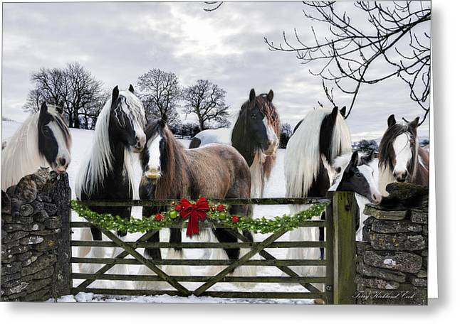 Gypsy Vanner Horse Greeting Cards - A Merry Gypsy Christmas Greeting Card by Terry Kirkland Cook