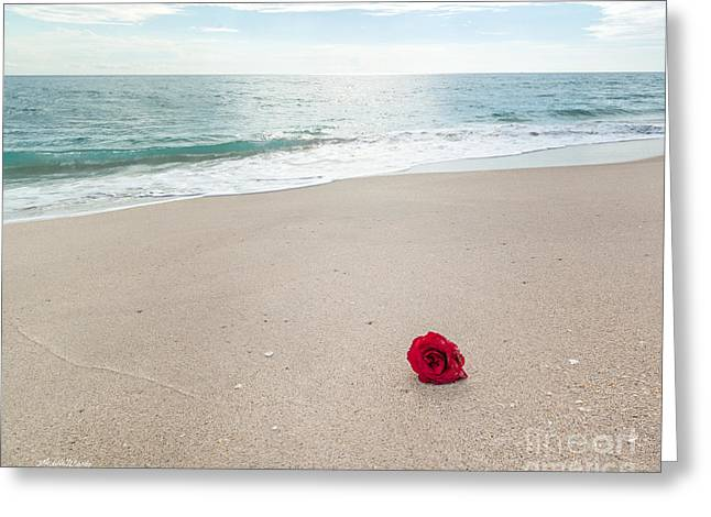 Beach Roses Greeting Cards - A Message in a Rose Greeting Card by Michelle Wiarda