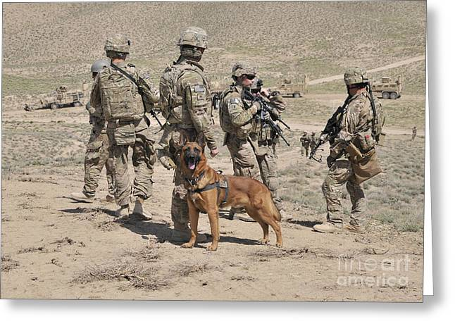 Working Dog Greeting Cards - A Military Working Dog Accompanies U.s Greeting Card by Stocktrek Images