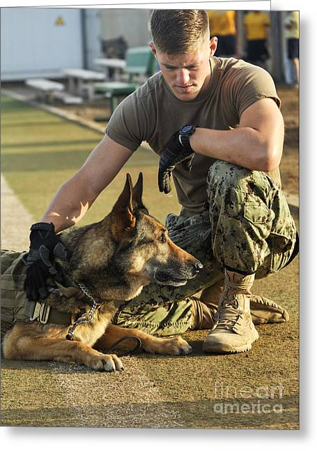 Dog Handler Greeting Cards - A Military Working Dog Handler, Pets Greeting Card by Stocktrek Images