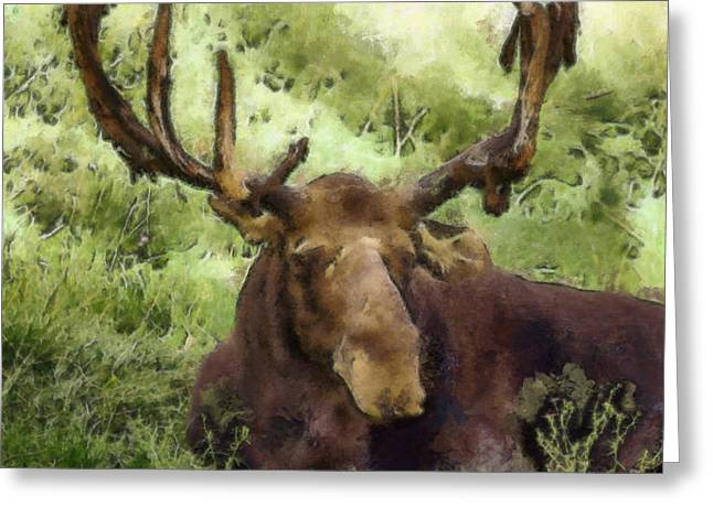 Moose Bull Greeting Cards - A Moose Abstract Greeting Card by Ernie Echols