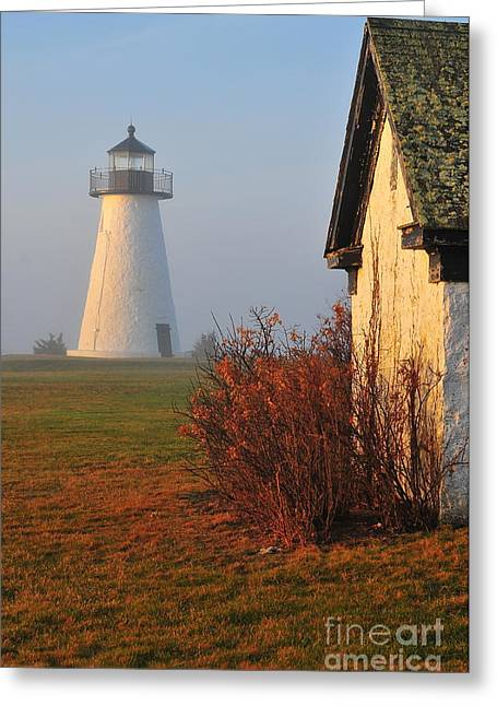 A Morning Fog Greeting Card by Catherine Reusch  Daley