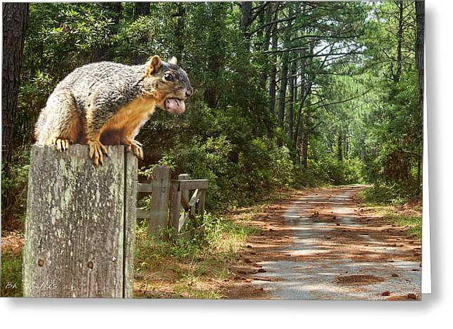 Fox Squirrel Greeting Cards - A Mouth Full Greeting Card by Bonnie Willis
