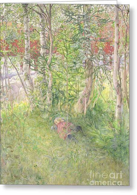 Autumn Prints Greeting Cards - A Nap Outdoors Greeting Card by Carl Larsson
