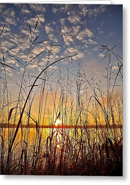 Sonne Greeting Cards - A New Day Begins ... Greeting Card by Juergen Weiss