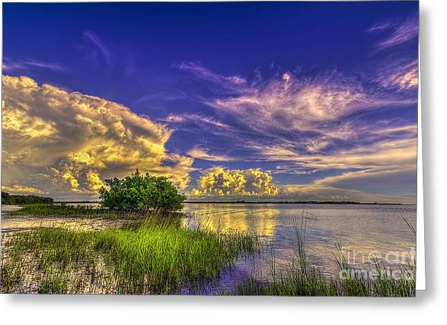 Calm Seas Greeting Cards - A New Experience Greeting Card by Marvin Spates