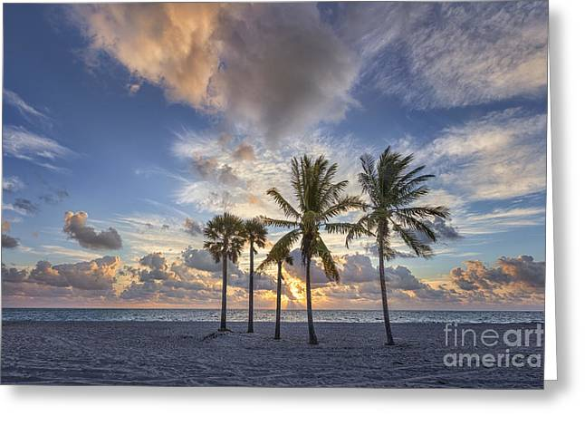 Sand Key Greeting Cards - A New Tomorrow Greeting Card by Evelina Kremsdorf