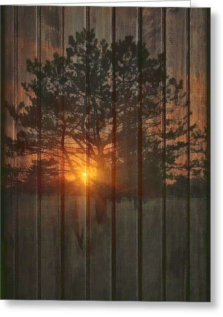 A New Tree Greeting Card by Tom York Images