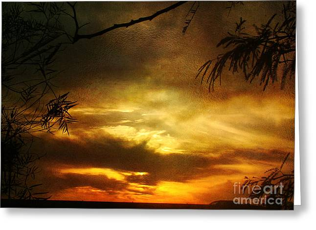 Sunset Prints Greeting Cards - A New Year Greeting Card by Beverly Guilliams