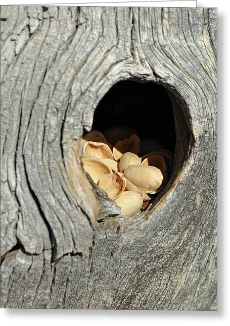 Knothole Greeting Cards - A Nice Cache Greeting Card by Bruce Gourley