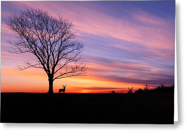 New England Greeting Cards - A November Sunrise Greeting Card by Bill  Wakeley