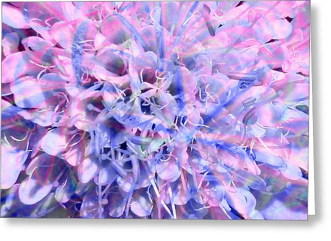 Flower Bombs Greeting Cards - A Nuclear Balm Greeting Card by Steve Taylor