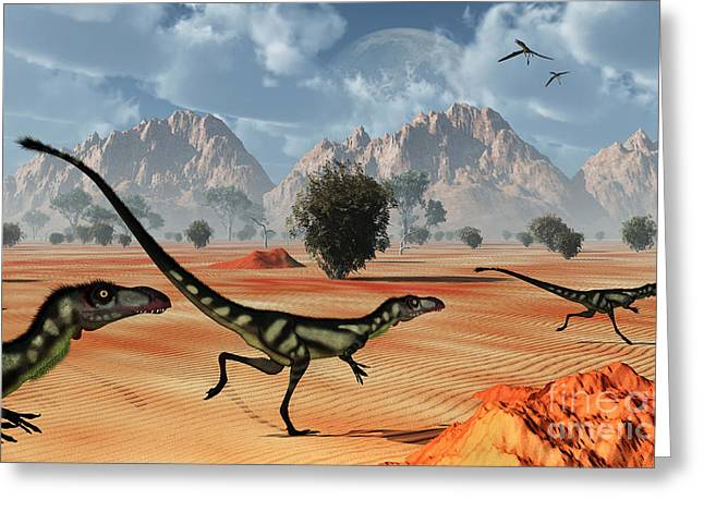 Ripples In The Sand Greeting Cards - A Pack Of Dilong Tyrannosaurid Greeting Card by Mark Stevenson