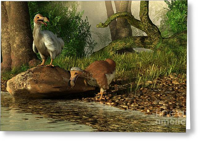 River View Greeting Cards - A Pair Of Dodo Birds Drinking Greeting Card by Daniel Eskridge