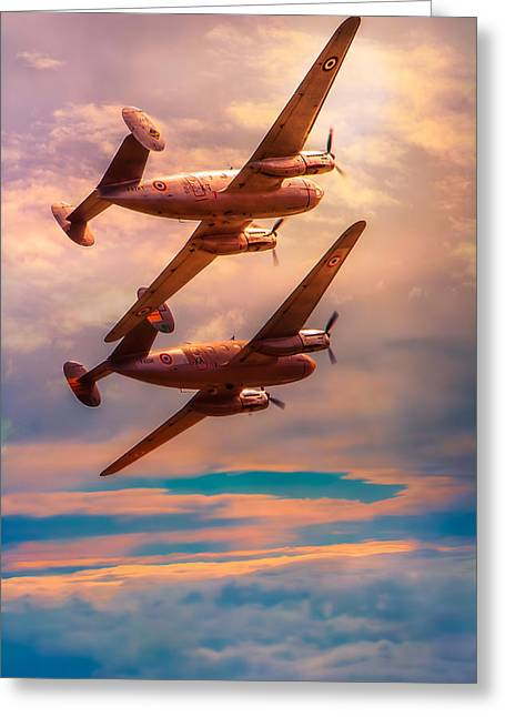 Aerobatics Greeting Cards - A Pair of Flamingos Greeting Card by Chris Lord