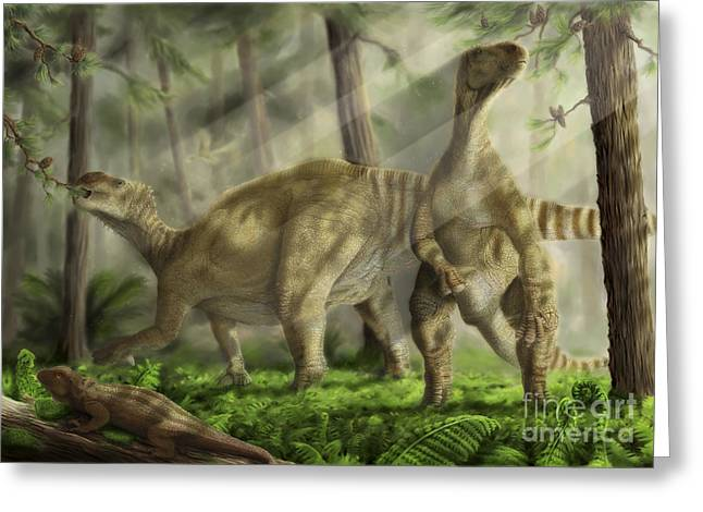 Paleontology Greeting Cards - A Pair Of Iguanodon Bernissartensis Greeting Card by Alice Turner