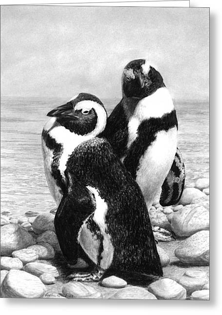 Photorealism Greeting Cards - A Pair of Penguins Greeting Card by Heather Ward