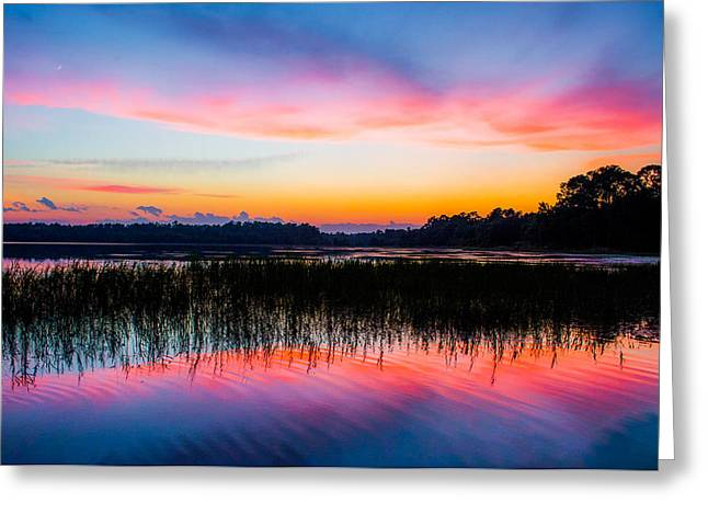 Reflections In River Greeting Cards - A Palette of Colors Greeting Card by Parker Cunningham