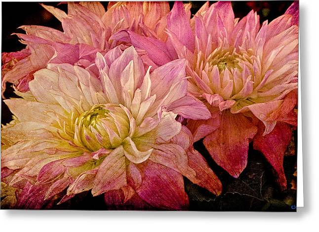 A Pastel Bouquet Greeting Card by Chris Lord