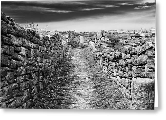Delos Greeting Cards - A Path to Delos Island Greeting Card by John Rizzuto
