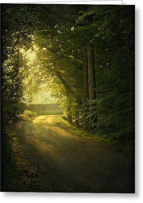 Road Greeting Cards - A Path To The Light Greeting Card by Evelina Kremsdorf