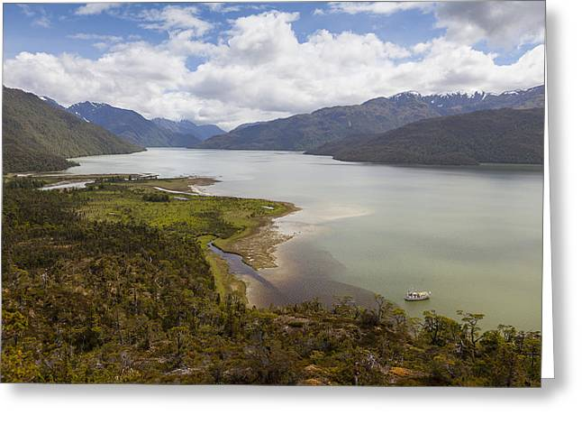 Temperate Rain Forest Greeting Cards - A Peaceful Bay in Southern Chile Greeting Card by Tim Grams
