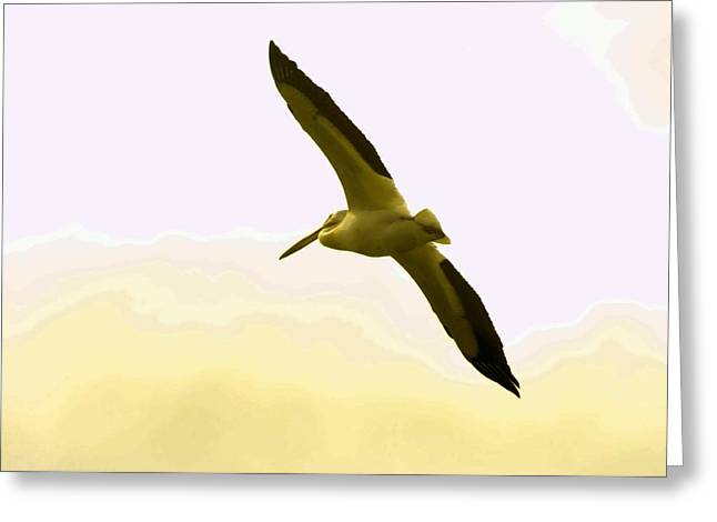 Water Fowl Greeting Cards - A pelican in flight Greeting Card by Jeff  Swan
