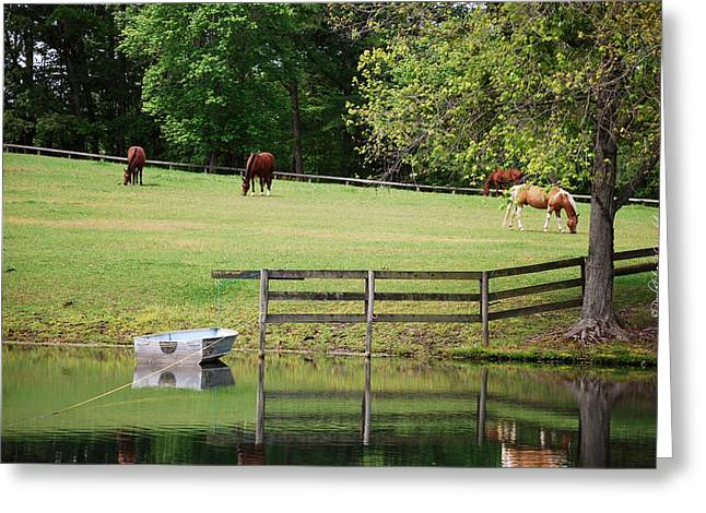 Top Seller Greeting Cards - A Perfect Day - Buckhorn Farm Greeting Card by Paulette B Wright
