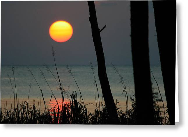 A Summer Evening Greeting Cards - A Perfect End Greeting Card by Marty Fancy