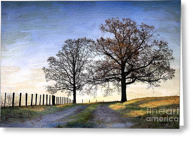 Gravel Road Greeting Cards - A Perfect Morning In April Greeting Card by Sari Sauls