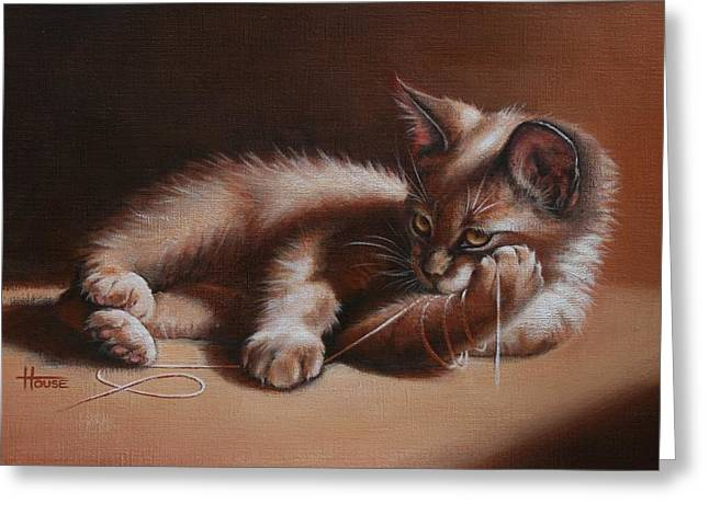 Playful Kitten Greeting Cards - A Place in the Sun Greeting Card by Cynthia House