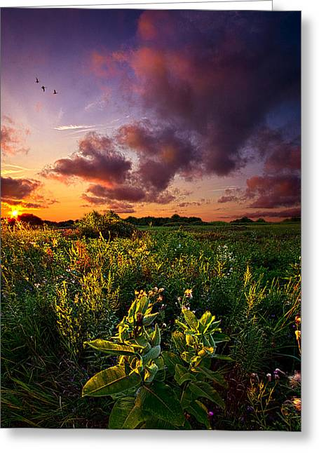 Geographic Greeting Cards - A Place to Camp Greeting Card by Phil Koch
