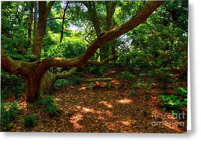 Roanoke Island Greeting Cards - A Place To Rest Greeting Card by Mel Steinhauer
