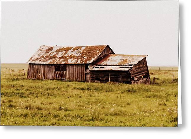 Alberta Prairie Landscape Greeting Cards - A Prairie Past Greeting Card by Ramona Johnston