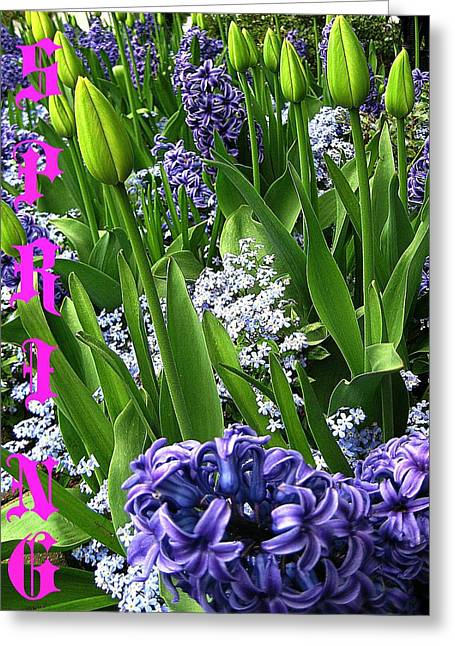 Book Cover Art Greeting Cards - A Promise of Spring Greeting Card by Shirley Sirois