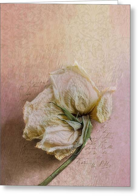 Rose Petals Greeting Cards - A Promise Greeting Card by Robin-lee Vieira