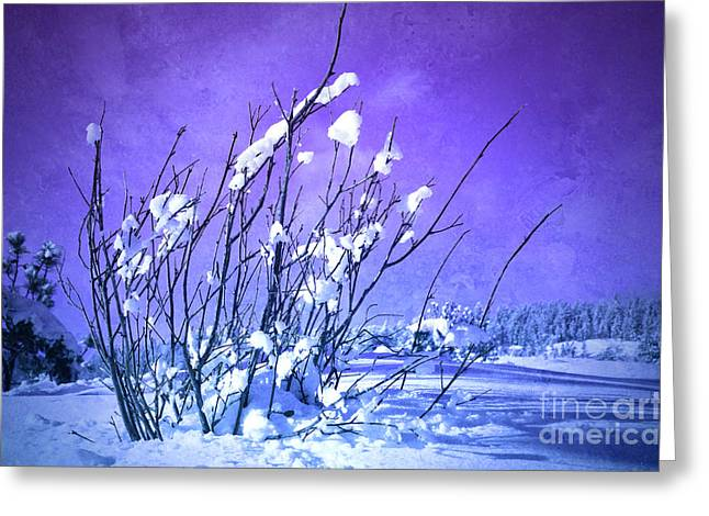 Cool Tones Greeting Cards - A Purple Winter Greeting Card by Tara Turner