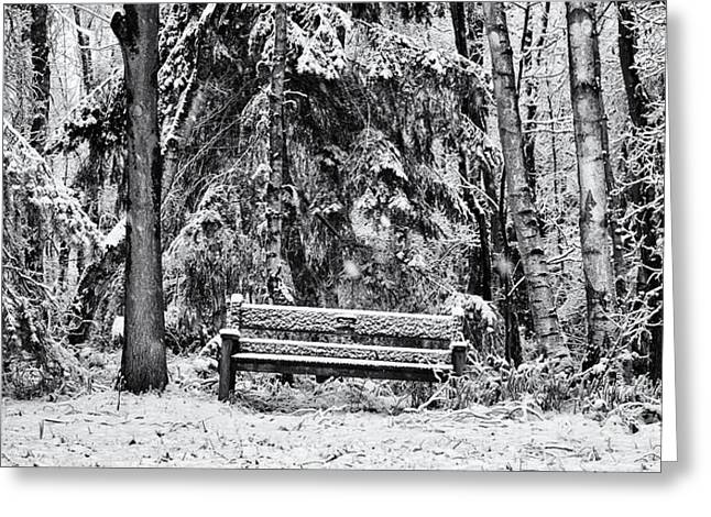 Winter Day Greeting Cards - A Quiet Place Greeting Card by Tim Gainey