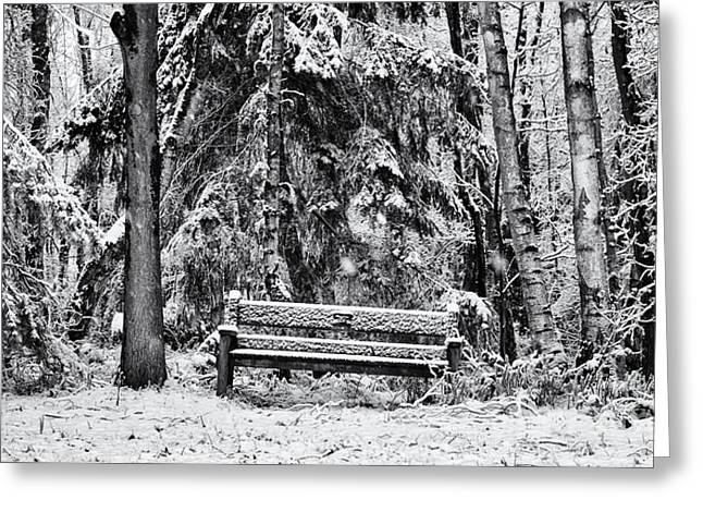 Wintry Greeting Cards - A Quiet Place Greeting Card by Tim Gainey