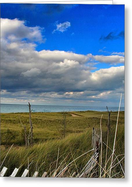 Beach Sand Birds Flying Clouds Sun Sky Trees Grass Building Day Beautiful Wings Flock Greeting Cards - A quiet walk to the beach. Greeting Card by Paul Szakacs