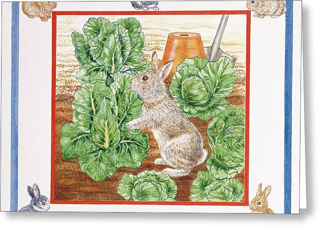 Garden Vegetables Greeting Cards - A Rabbit In The Cabbage Patch Wc On Paper Greeting Card by Catherine Bradbury
