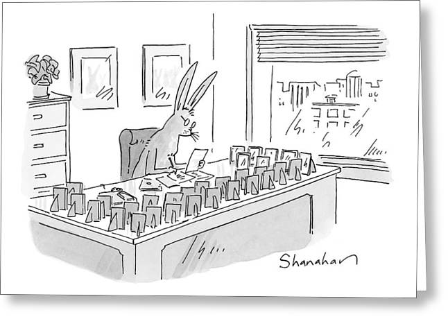 A Rabbit Sits At An Office Desk Greeting Card by Danny Shanahan